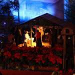 2012.12.25_Święta Bożego Narodzenia0003